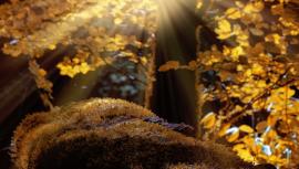 Jesenný balíček príslušenstva - zoznam základných vecí, bez ktorých sa nezaobíde žiadny motorista