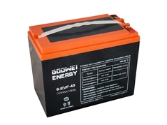 Trakčná batéria Goowei - Electric Vehicle 6-EVF-45, 45Ah, 12V (E7342)